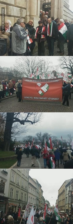 Polak, Węgier, dwa bratanki!
