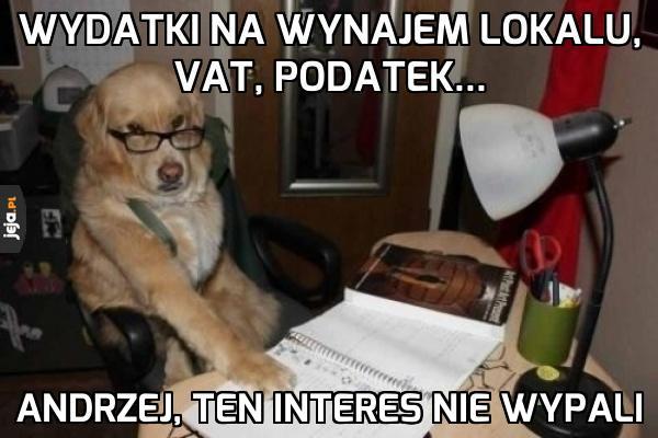Pies księgowy