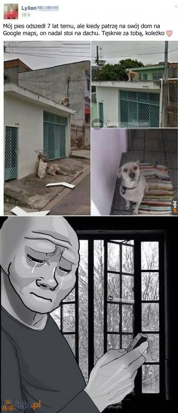 Przyszedłem tu się śmiać, a nie płakać!