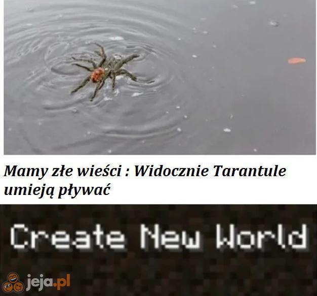 Arachnofobicy, łączcie się