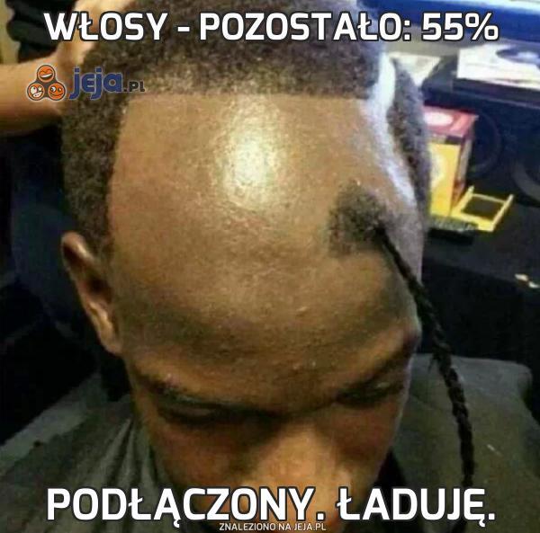 Włosy - pozostało: 55%