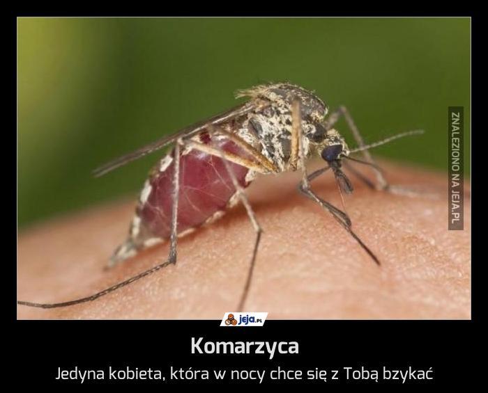 Komarzyca