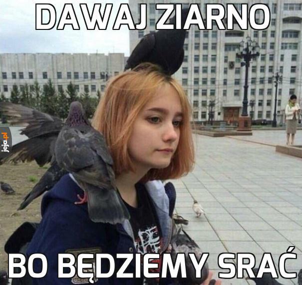 Z gołębiami nie ma żartów
