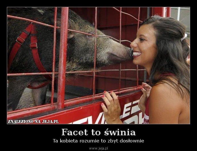 Facet to świnia