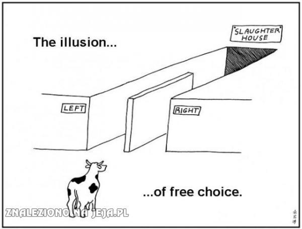 Złudzenie wolnego wyboru