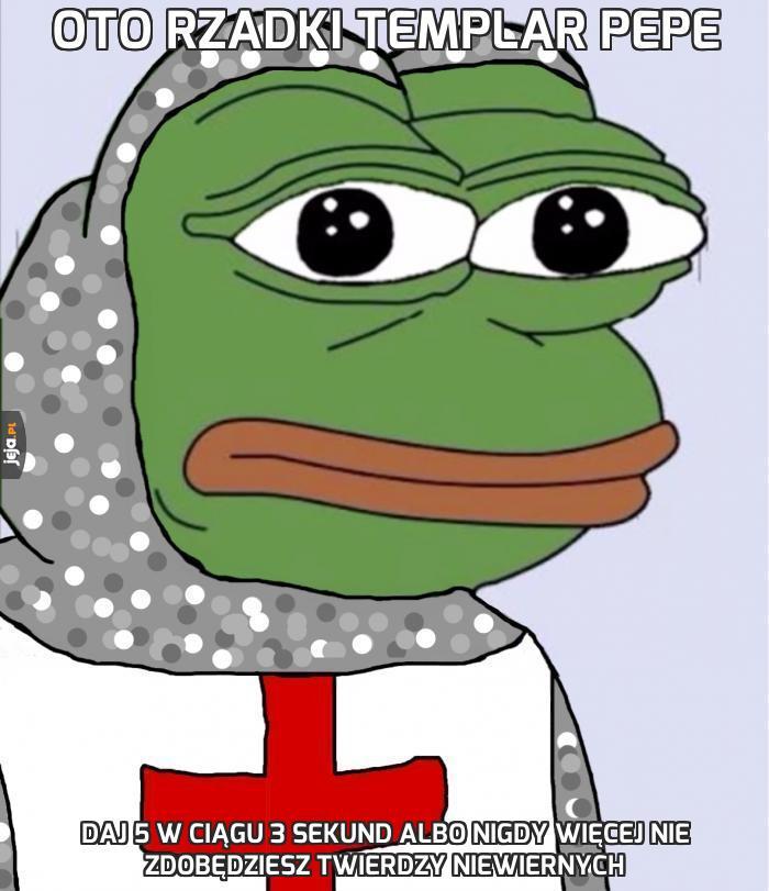 Oto rzadki Templar Pepe