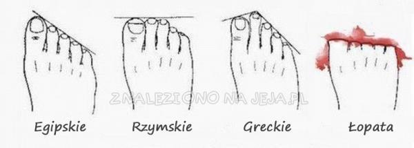 Typy stóp