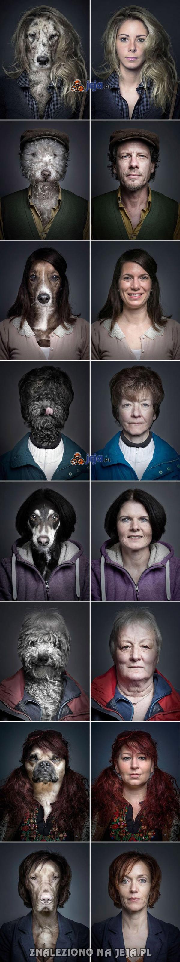 Pies ubrany jak właściciel