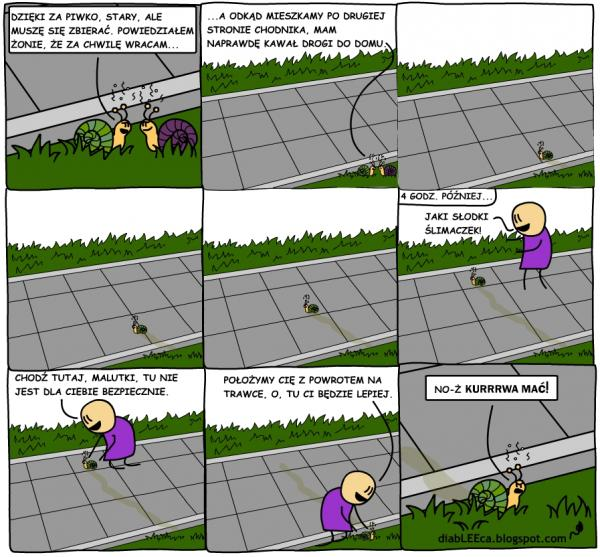 Ślimaki mają ciężkie życie...