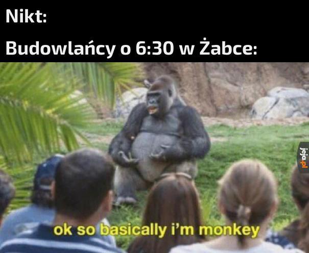 Małpeczkę poproszę