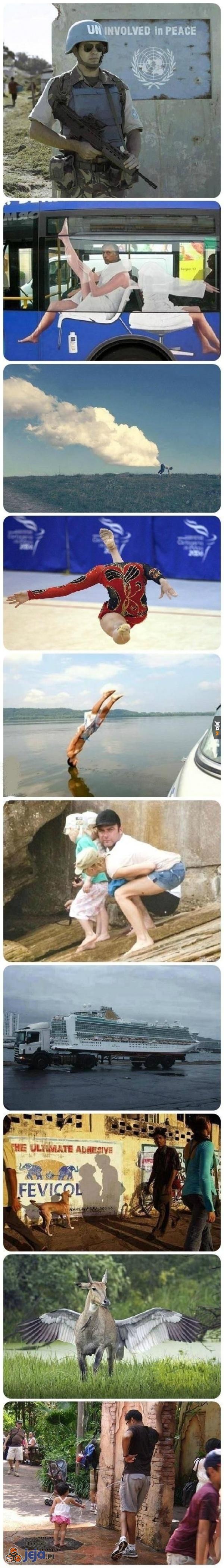 Zdjęcia zrobione w idealnym momencie
