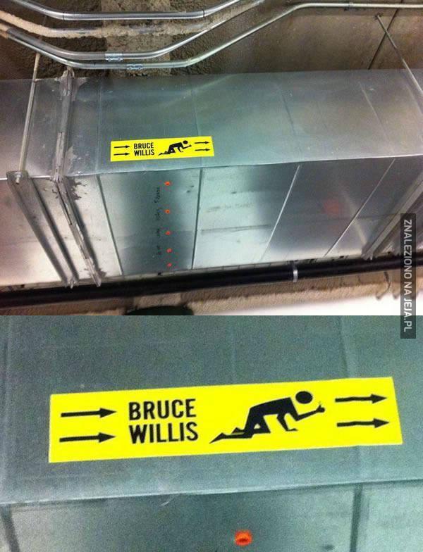 Specjalnie dla Bruce'a