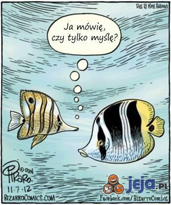 Przemyślenia ryb