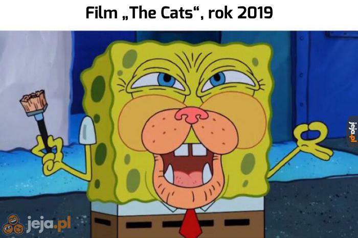 Nadal wygląda lepiej niż koty w zwiastunie