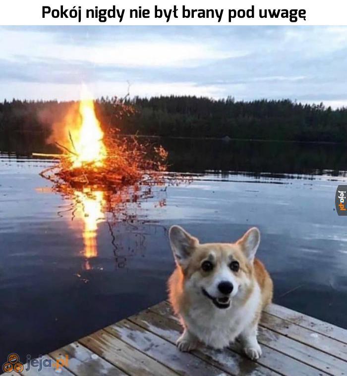 Czas dobrego psa dobiegł końca
