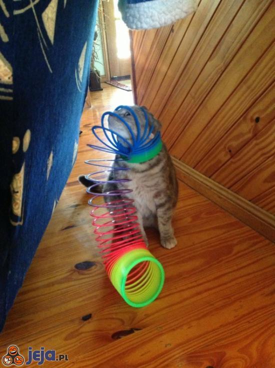Kocie wygłupy