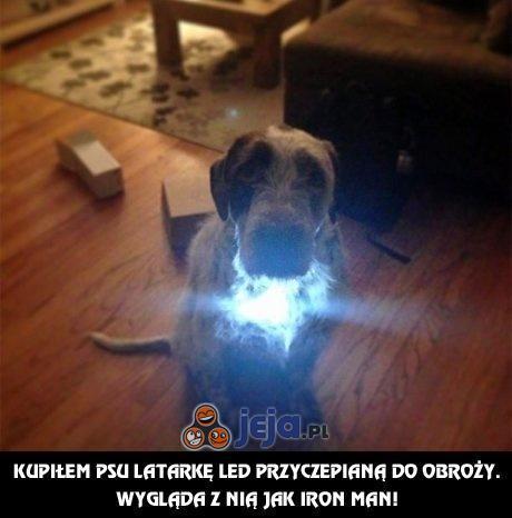 Pies z latarką - prawie jak Iron Man!