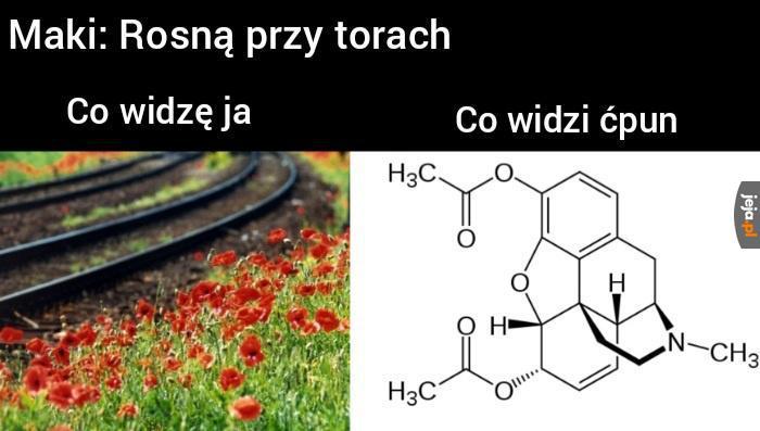 Pora na chemiczne meme