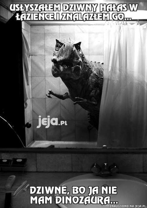 Usłyszałem dziwny hałas w łazience i znalazłem go...