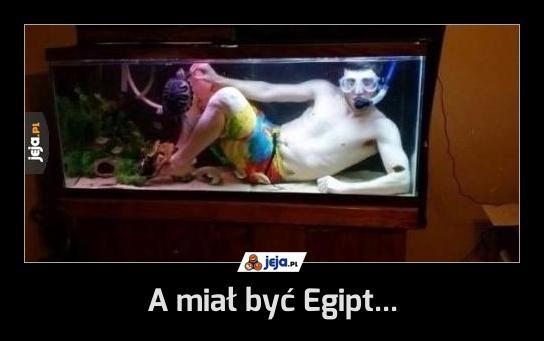 A miał być Egipt...