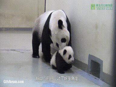 Mamo nie! Nie idę spać!