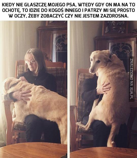 Psy też potrafią być wredne... Przynajmniej tak im się wydaje.