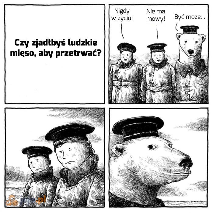 Niedźwiedzie od zawsze były liberalne