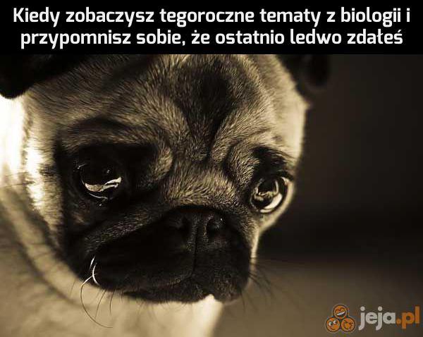 Biologa genetyka nie tyka, ale mnie już tak