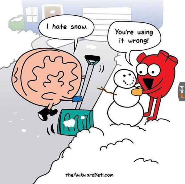 Jak należy postępować ze śniegiem