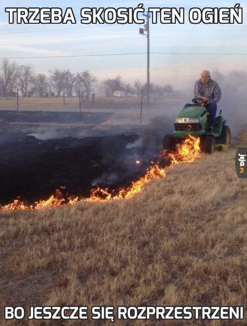 Trzeba skosić ten ogień