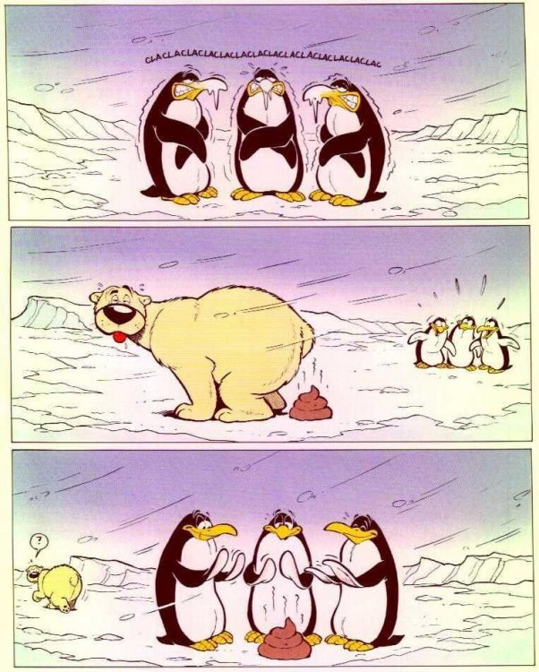Piecyk arktyczny