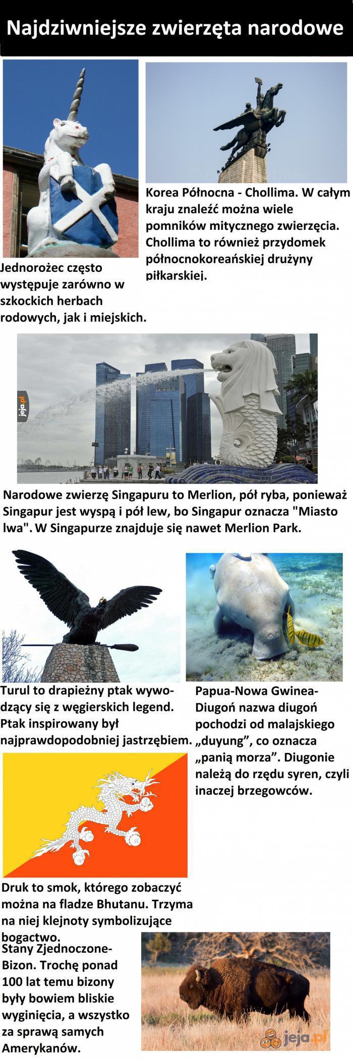 Najdziwniejsze zwierzęta narodowe