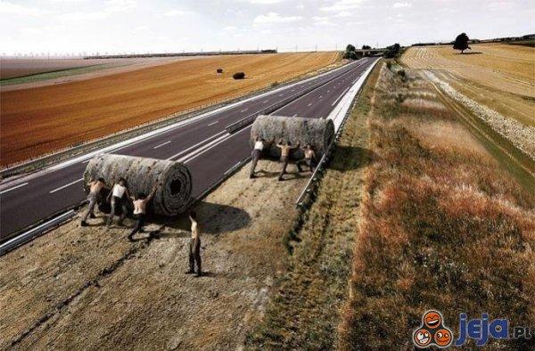 To już koniec! Trzeba pozwijać autostrady i rozebrać stadiony!