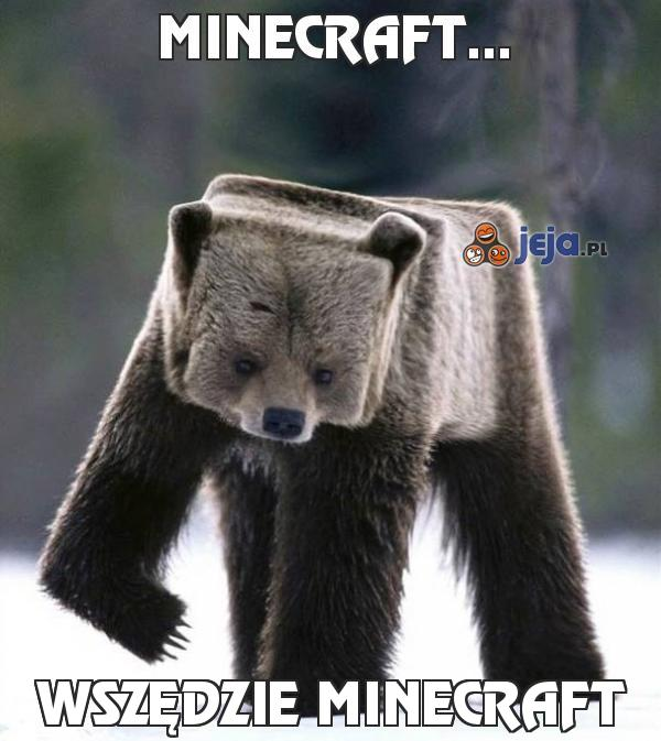 Minecraft...