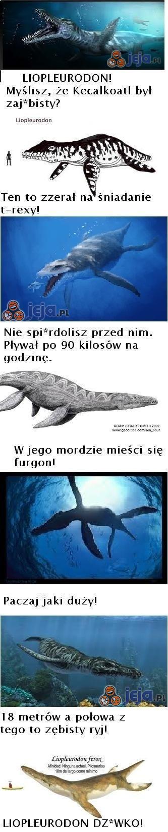 Liopleurodon - prawdziwy sk*rwiel!
