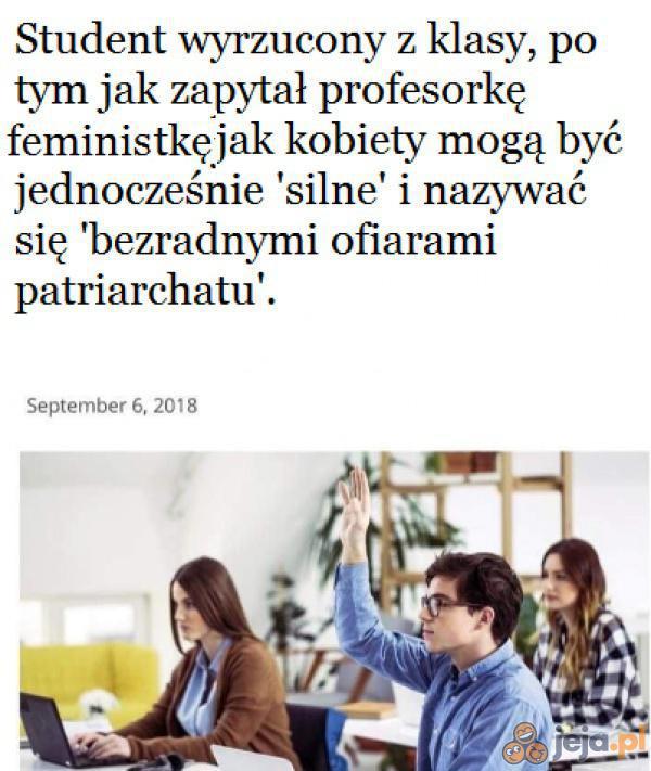 Feministki w pigułce