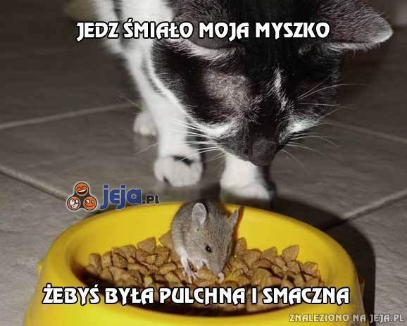 Jedz śmiało moja myszko