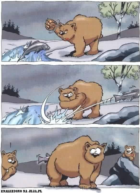Niedźwiedzie łowy