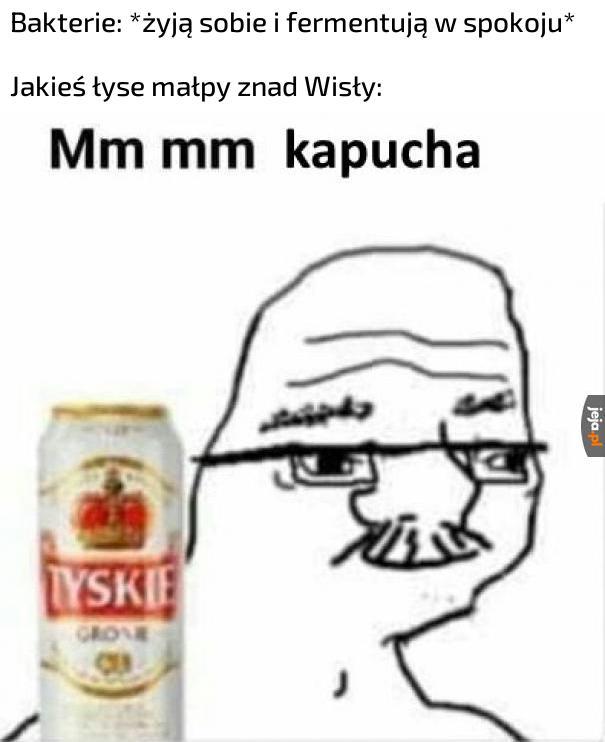 Kiszonka