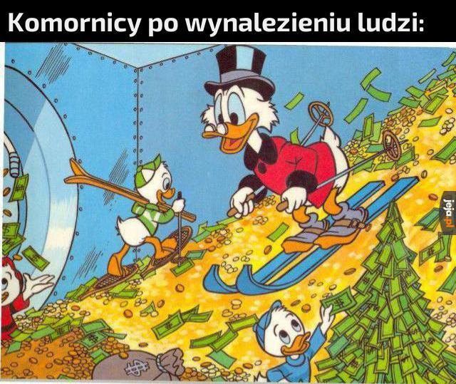 Bogactwo