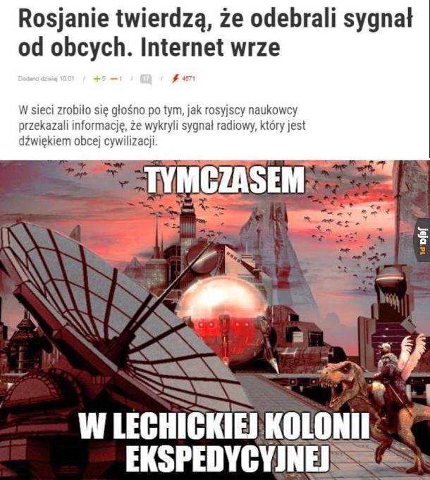 Tylko Polska!