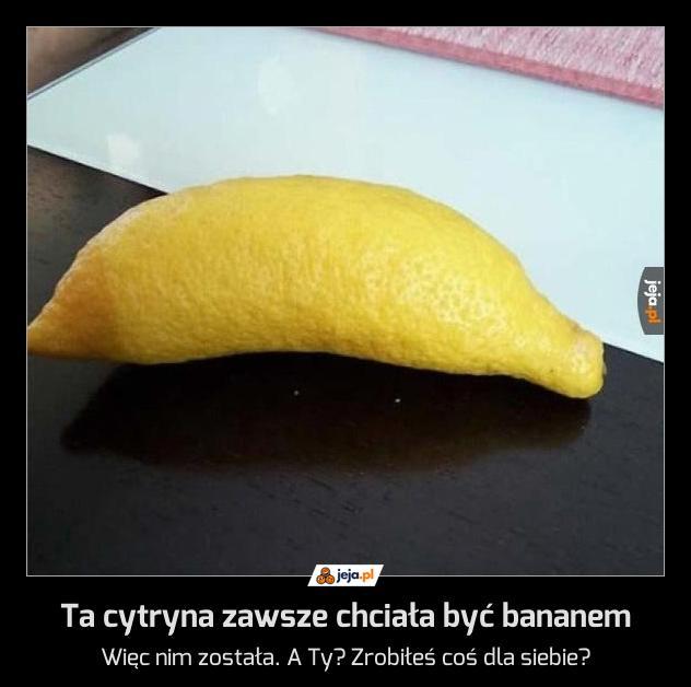 Ta cytryna zawsze chciała być bananem