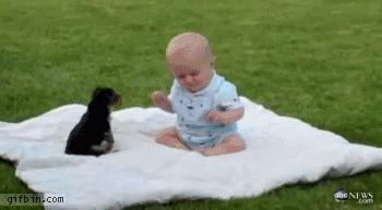 Epicka bitwa niemowlaka ze szczeniakiem