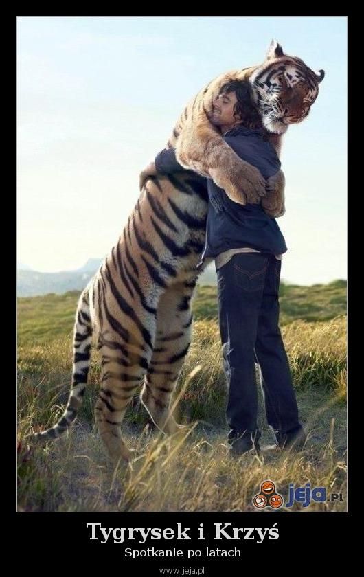 Tygrysek i Krzyś