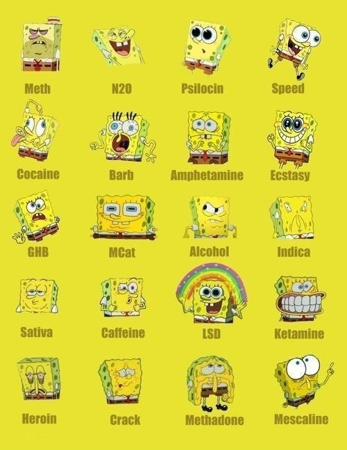 Jak narkotyki działają na Spongeboba?