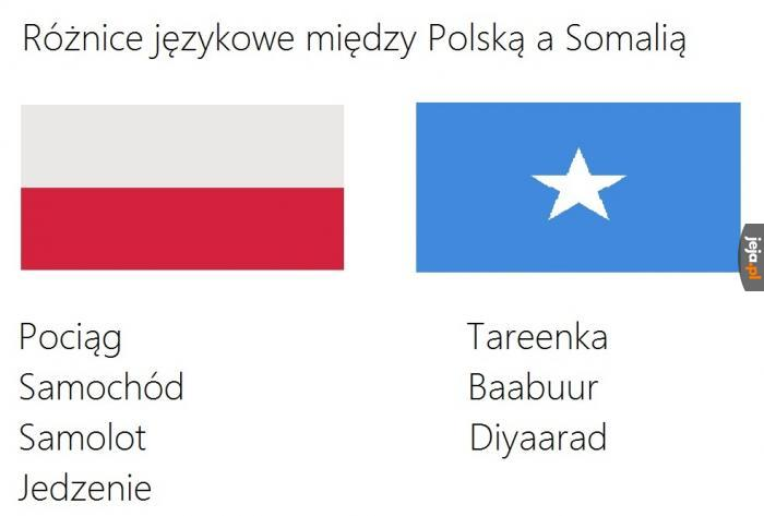 Polska vs Somalia