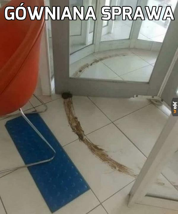Zasrane drzwi obrotowe