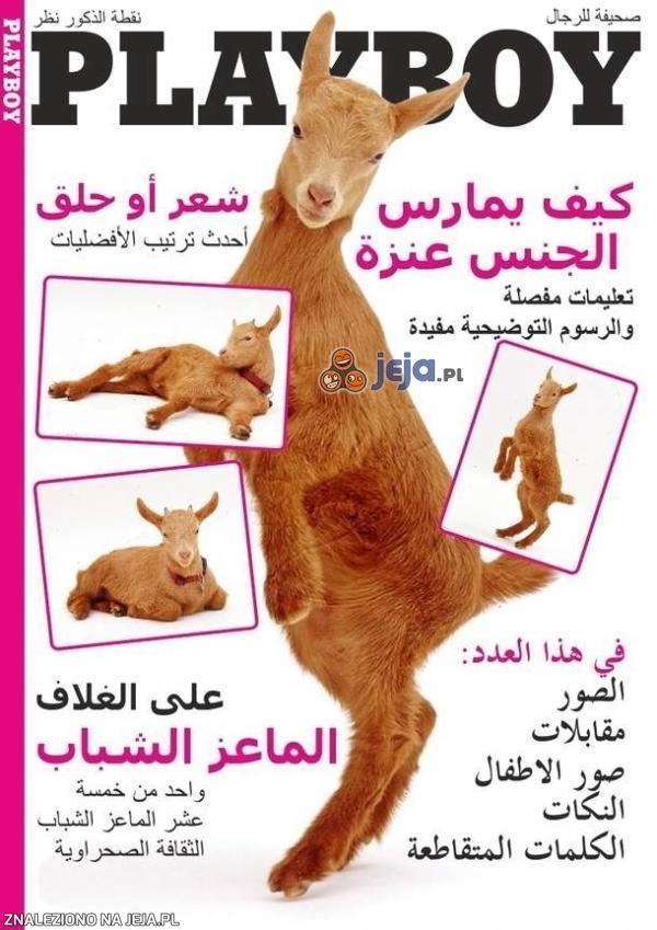 Playboy z Arabii Saudyjskiej
