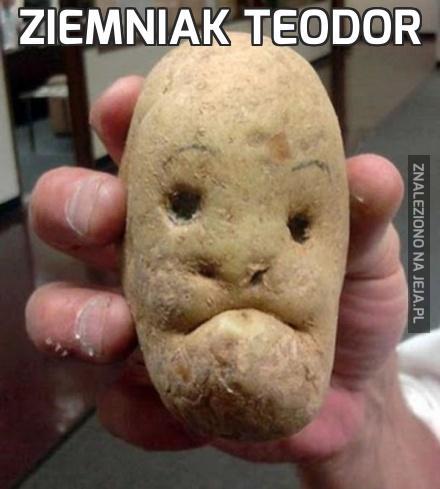 Ziemniak Teodor