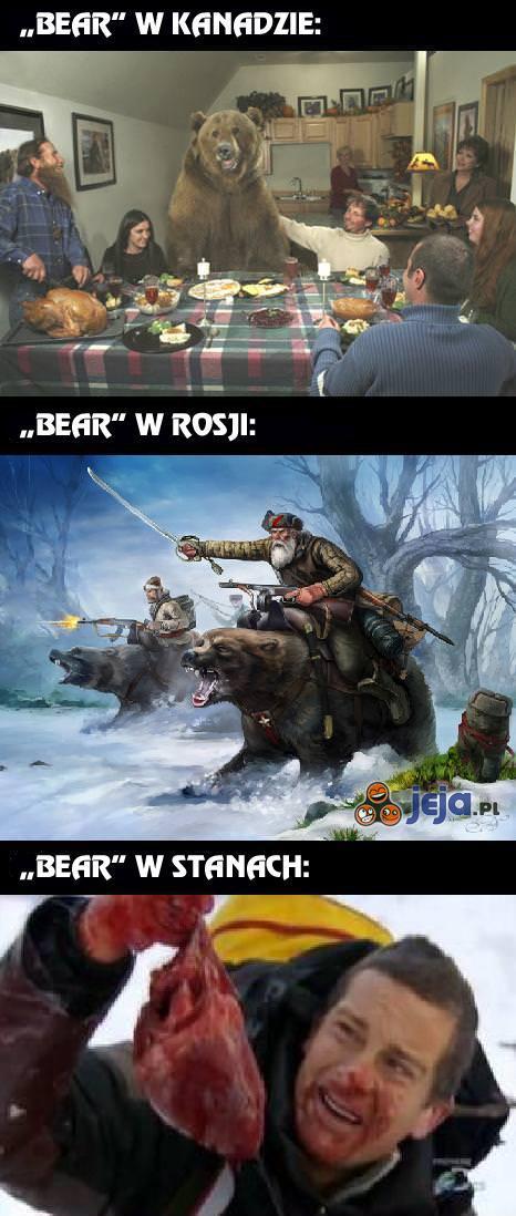 """""""Niedźwiedź"""" nie zawsze znaczy to samo..."""